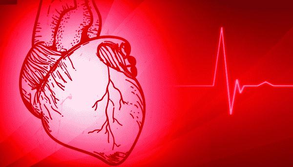 معدل نبضات القلب الطبيعي
