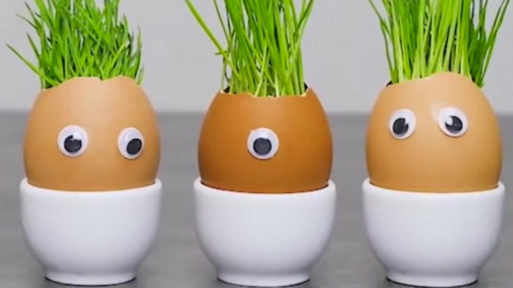 حقائق غذائية عن البيض المسلوق : السعرات الحرارية والبروتين وأكثر