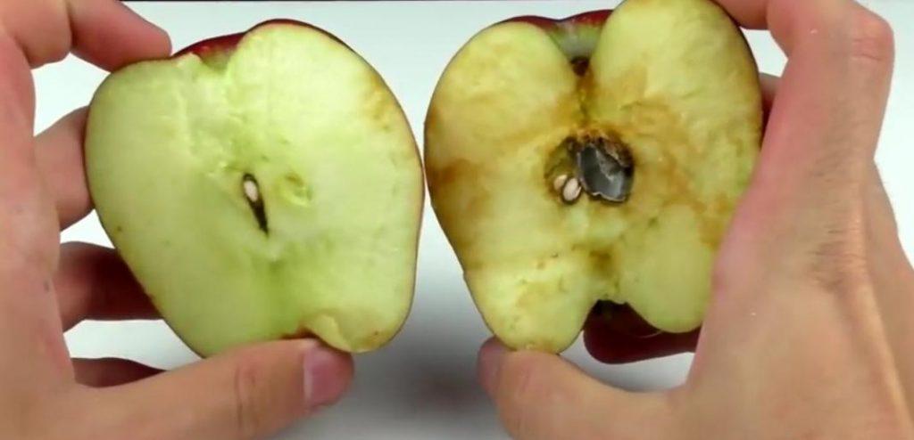 هل التفاح يزيد الوزن ام ينقصه؟