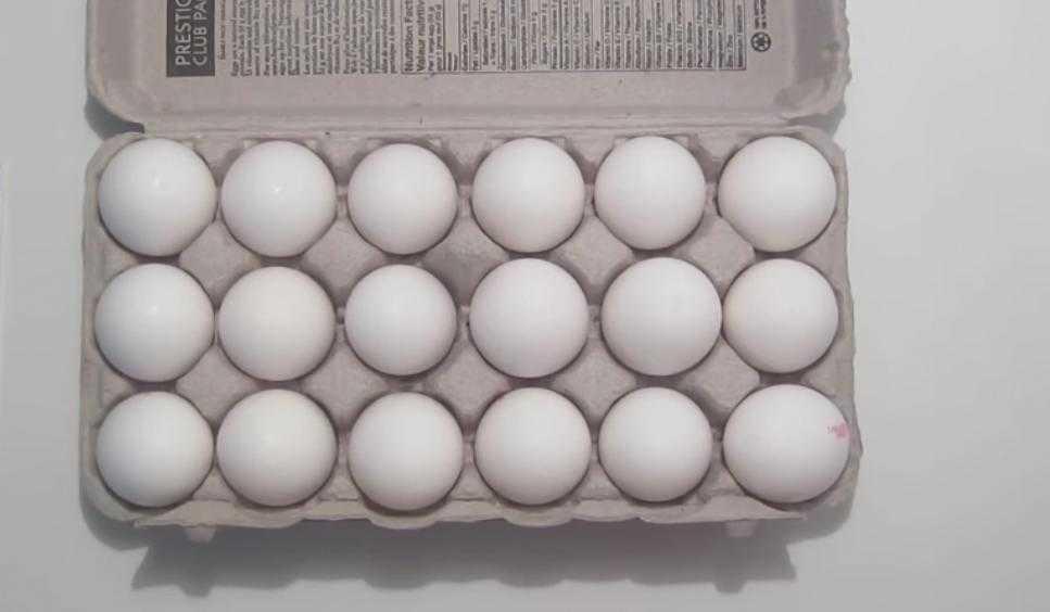 ماهي كمية البروتين في البيضة الواحدة