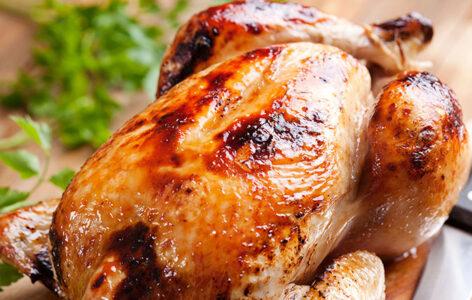 نسبة البروتين في صدور الدجاج